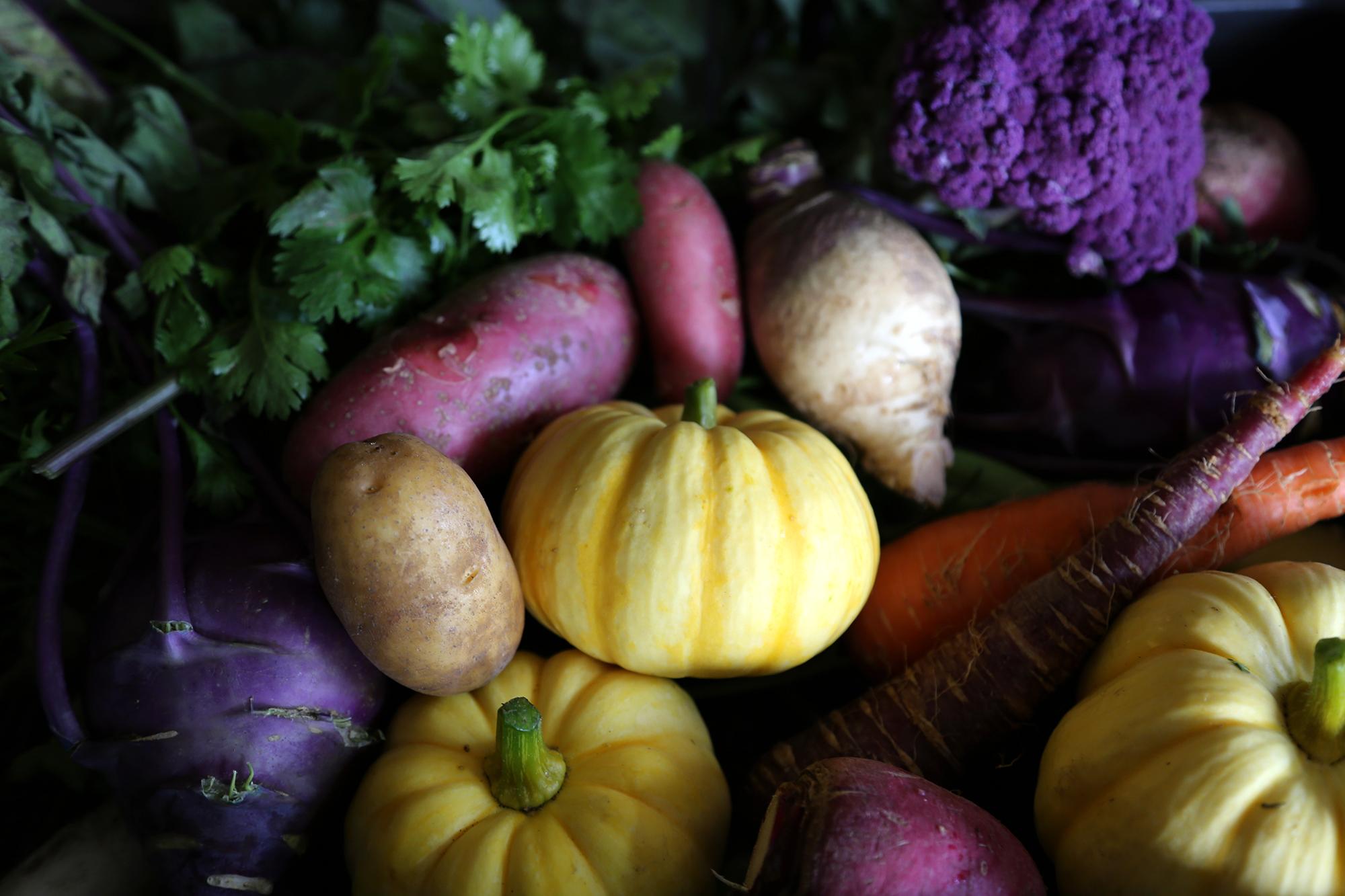 有機農業を中心とした面白いことにチャレンジ!